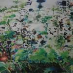 Fragmented Landscape